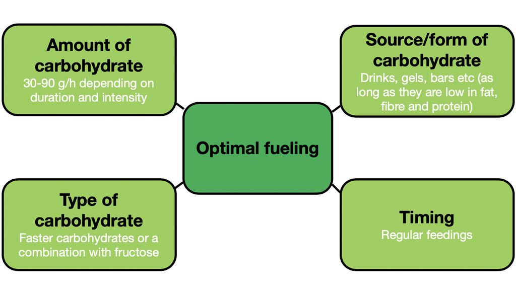 optimal fueling