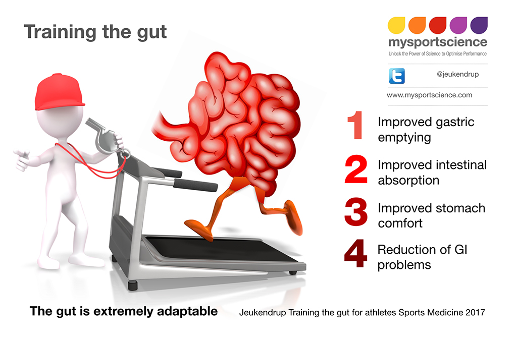 Training-the-gut